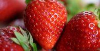comprar parafina fresas barata